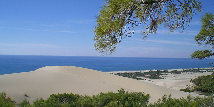 Patara Beach from the dunes